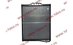 Радиатор DF 300 л.с. Е2 фото Россия