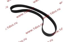 Ремень 8PK1160 SH (612600061295) фото Россия