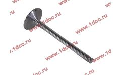 Клапан впускной d-11, D-55 H2 фото Россия
