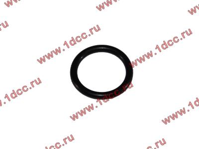 Кольцо уплотнительное форсунки резиновое H2/H3 HOWO (ХОВО) VG609070080 фото 1 Россия