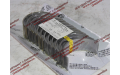 Вкладыши шатунные ремонтные WP12 (комплект) +0,25 SH фото Россия