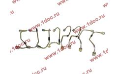 Трубки высокого давления, комплект на ДВС 8шт WP10E3 фото Россия