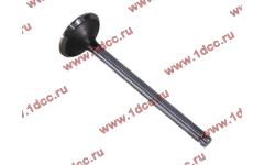 Клапан выпускной 300л.с. (D-46мм) DF фото Россия