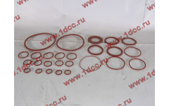 Набор уплотнительных колец на ДВС WD615/WP10 фото Россия