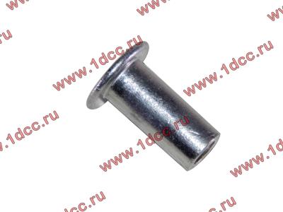 Заклепка алюминиевая 10х24 H2/H3 HOWO (ХОВО) 189000340068 AL фото 1 Россия