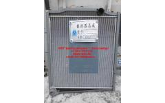 Радиатор HANIA E-3 336 л.с. фото Россия