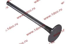 Клапан впускной DF фото Россия