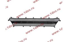 Решетка радиатора (сетка капота) H A7 фото Россия