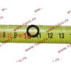 Кольцо уплотнительное форсунки резиновое малое H3 HOWO (ХОВО) VG1540080095 фото 2 Россия