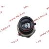 Датчик давления масла H3 HOWO (ХОВО) VG1540090035/1 фото 2 Россия