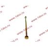 Болт центральный рессоры задней без бобышки H2/H3/SH HOWO (ХОВО) WG9638520018+013 фото 3 Россия