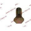 Болт пустотелый М12х1,25 (штуцер топливный) H HOWO (ХОВО) 90003962607 фото 3 Россия