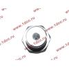 Датчик давления масла H3 HOWO (ХОВО) VG1540090035/1 фото 3 Россия